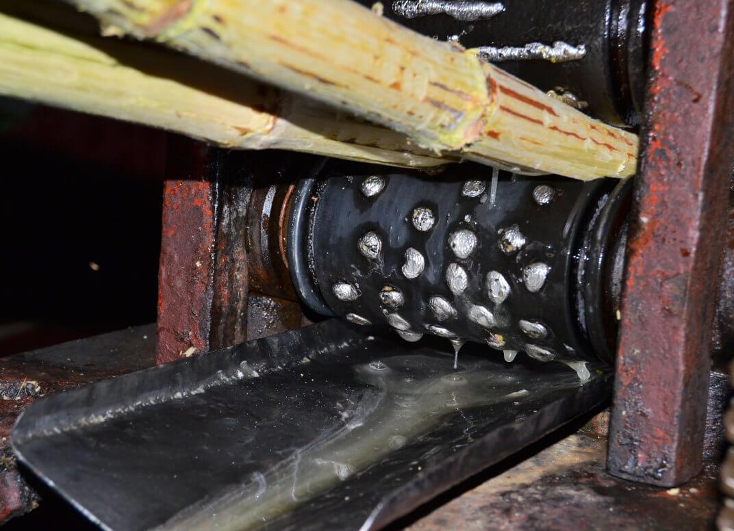 Zuckerrohr wird durch eine Maschine geschoben und entsaftet